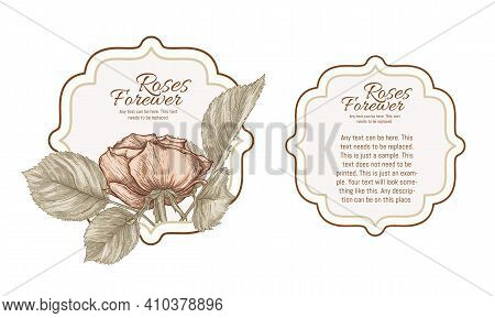 Set Of Face And Back Labels, Stickers For Food Products Or Cosmetics In Engraving, Vintage, Old, Ret