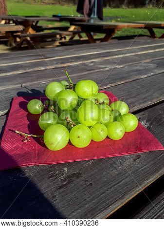 Ripe And Green Grapes On A Red Napkin On A Wooden Table. Healty Snack In Nature