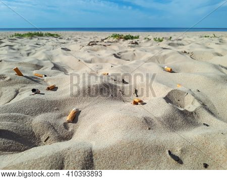 Cigarette Butts In The White Sand On Baltic Sea Beach With Water In Background