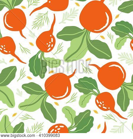 Red Radish Seamless Pattern In Vector. Hand Drawn Vegetables, Parsley, Dill, Herbs In The Scandinavi