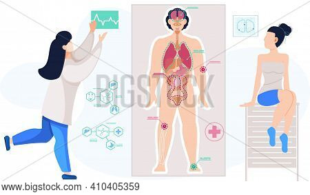 Detailed Information On Organs Functioning. Anatomical Structure Of Human Body. Scientist In Lab Coa