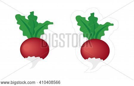 Radish Or Beetroot Sticker With White Die-cut Outline. Vector Cartoon Icon Of Red Vegetable With Gre