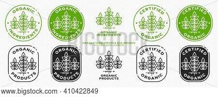 Concept For Product Packaging. Labeling - Natural Organic Certified Products. Plant Icon With Liquid