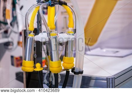 Teat Cups Of Automated Cow Milking Suction Machine At Cattle Dairy Farm, Exhibition, Trade Show: Clo