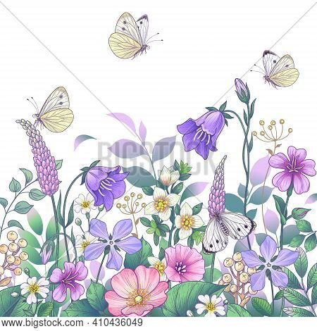 Hand Drawn Blooming Pink And Purple Meadow Flowers And Butterflies On White Background. Vector Elega
