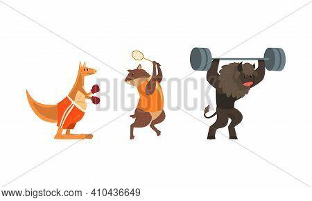 Bull Exercising With Barbell, Marmot Playing Tennis, Kangaroo Boxing, Powerful Wild Animals Characte