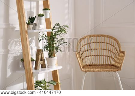 Elegant Decorative Ladder With Houseplants And Chair In Light Room