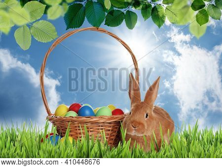 Cute Bunny And Wicker Basket With Colorful Easter Eggs On Green Grass Outdoors