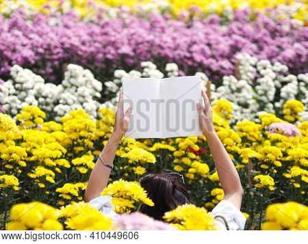 Woman Two Hands Holding Blank Beige Book Over Yellow Chrysanthemum Flowers At Plantation Farm. Natur