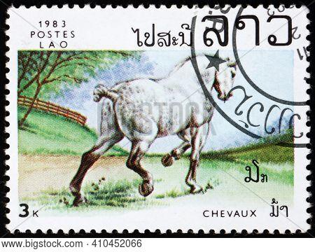 Laos - Circa 1983: A Stamp Printed In Laos Shows White Horse, Circa 1983