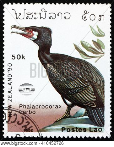 Laos - Circa 1990: A Stamp Printed In Laos Shows Great Cormorant, Phalacrocorax Carbo, Is A Seabird,