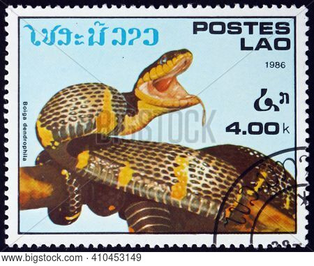 Laos - Circa 1986: A Stamp Printed In Laos Shows Mangrove Snake, Boiga Dendrophila, Is A Species Of