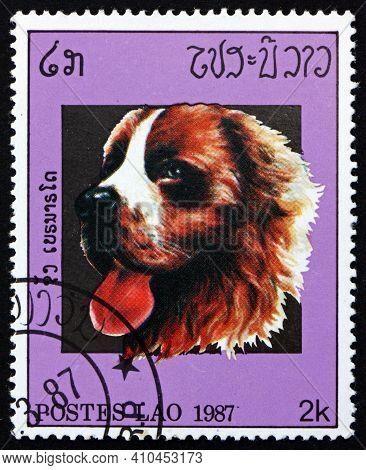 Laos - Circa 1987: A Stamp Printed In Laos Shows St. Bernard, Dog, Circa 1987