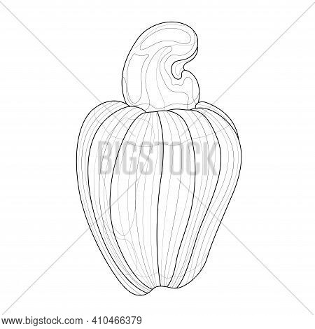 Cashew Nuts.coloring Book Antistress For Children And Adults. Illustration Isolated On White Backgro