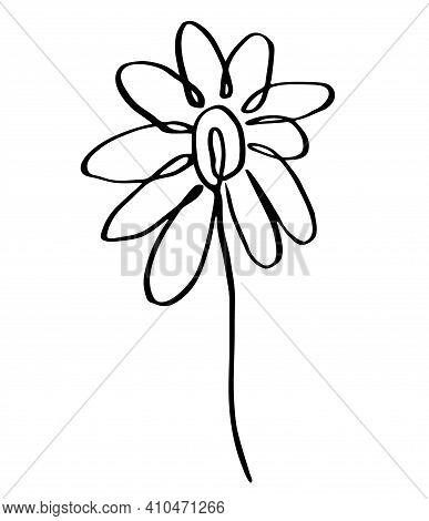 Single Vector Illustration Of A Flower. Line Art, Doodle Botany