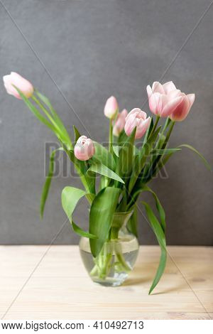 Spring Cozy Compozition Of Pink Tulips In Vase On Table, Copy Space, International Womans Day. Tulip