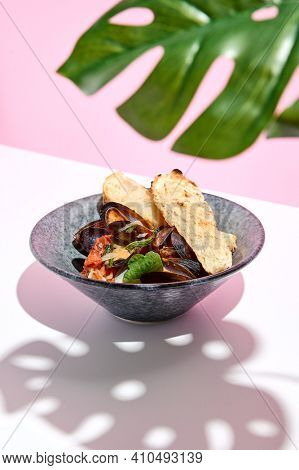Mussel with bread restaurant plate. Restaurant appetizer plate on white table with pink wall. Day sunlight with hard shadow of monstera palm leaves. Summer or spring restaurant food concept