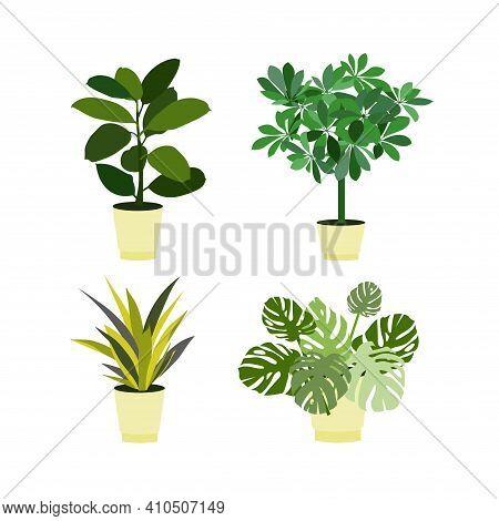 Flower In Pot Set. Shiflera Monstera Ficus Sansevieria In Pot Icon Art Design Element Stock Vector I