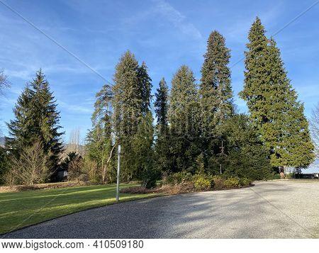 Court Park Next To The Au Castle (villa Au Or Schloss Au) On The Au Peninsula And Along Lake Zurich