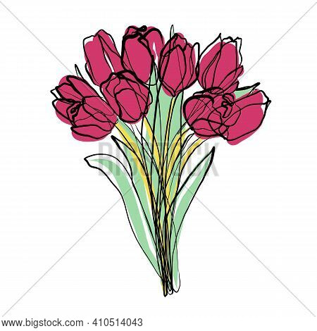Tulips Bouquet Illustration, Bloom Vector Sketch, Doodle. Flowers One Continuous Line Drawing, Color