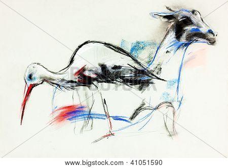Stork And Llama