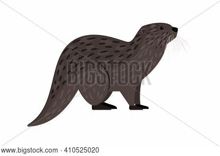 Brown Otter. Cartoon River Carnivore, Funny Swimming Mammal, Vector Illustration Of Furry Cute Exoti