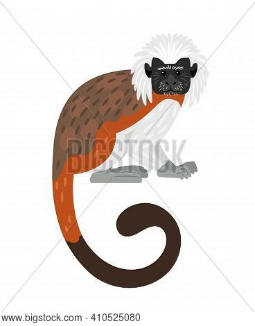 Tamarin Monkey. Cartoon Exotic Primate, Furry Character Of Zoo With White Head And Brown Tail, Vecto