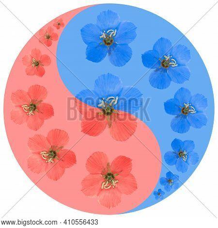 Floral Symbol Yin-yang. Moneyworts. Geometric Pattern Of Yin-yang Symbol, From Plants On Colored Bac