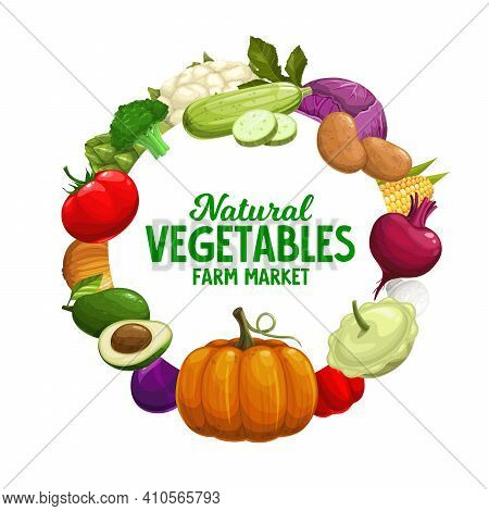 Vegetables Banner, Farm Market Food Veggies Frame, Vector Harvest. Natural Healthy Garlic, Pepper An