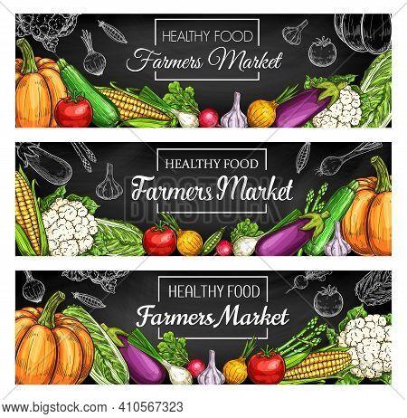 Fresh Farm Vegetable Blackboard Banners With Vector Sketches Of Garden Harvest Veggies. Tomato, Onio
