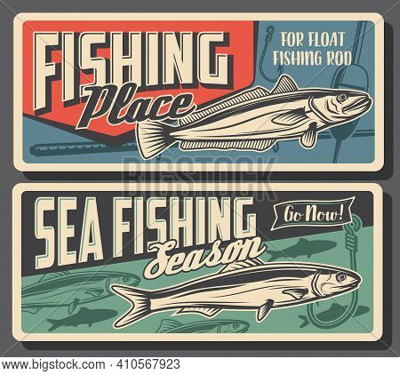 Hake And Sardine Fishing. Sea And Ocean Pilchard And Hake Fish Fresh Catch, Rod With Float Or Bobber