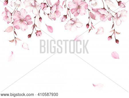 Flowers, buds and fall petals sakura on white background. Watercolor spring illustration with branches blossoming cherry, horizontal border, banner or frame for your text.