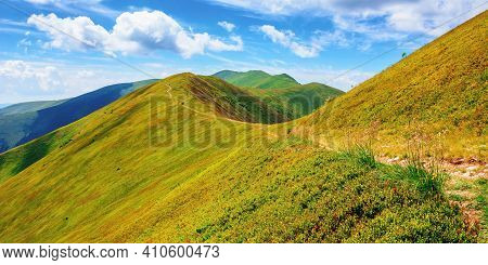 Path Through Borzhava Ridge. Beautiful Summer Nature Landscape Of Carpathian Mountain. Green Hillsid