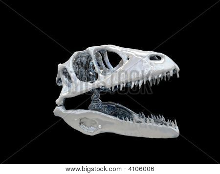 One Dinosaur head isolated on black background poster