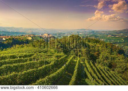 Langhe Vineyards Landscape And Castiglione Falletto Village Panorama, Unesco Site, Piedmont, Norther