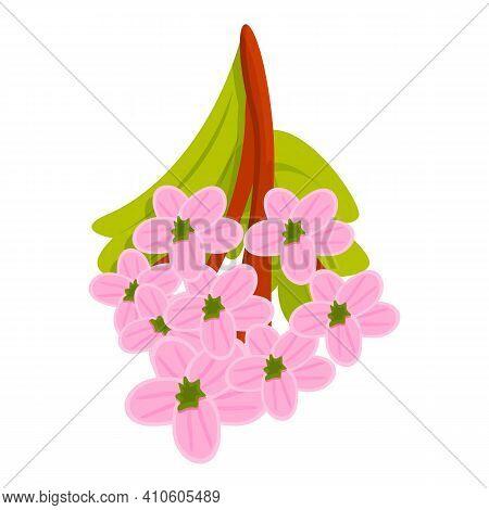 Spring Hawthorn Flower Icon. Cartoon Of Spring Hawthorn Flower Vector Icon For Web Design Isolated O