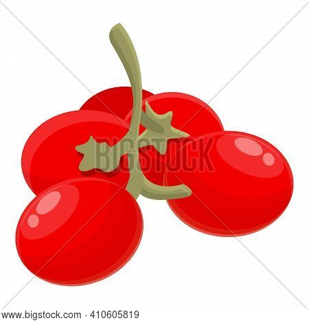 Ripe Hawthorn Icon. Cartoon Of Ripe Hawthorn Vector Icon For Web Design Isolated On White Background