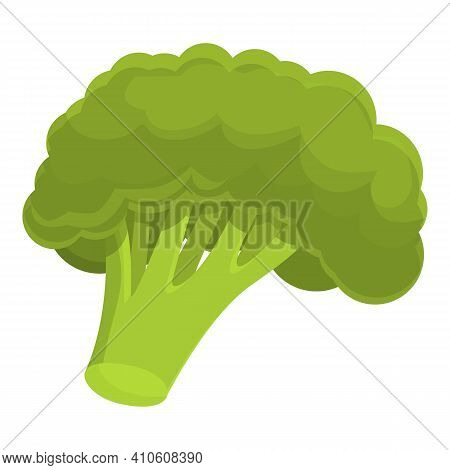 Broccoli Plant Icon. Cartoon Of Broccoli Plant Vector Icon For Web Design Isolated On White Backgrou