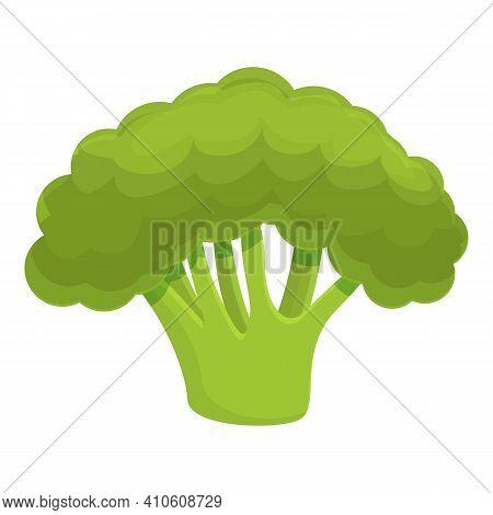 Ripe Broccoli Icon. Cartoon Of Ripe Broccoli Vector Icon For Web Design Isolated On White Background