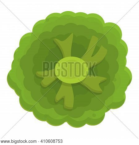 Grocery Broccoli Icon. Cartoon Of Grocery Broccoli Vector Icon For Web Design Isolated On White Back