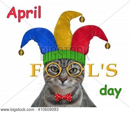 A Gray Cat Clown In A Jester Hat Wears Funny Glasses. April Fool's Day. White Background. Isolated.