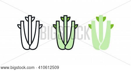 Celery Icon. Linear Color Icon, Contour, Shape, Outline Isolated On White. Thin Line. Modern Design.