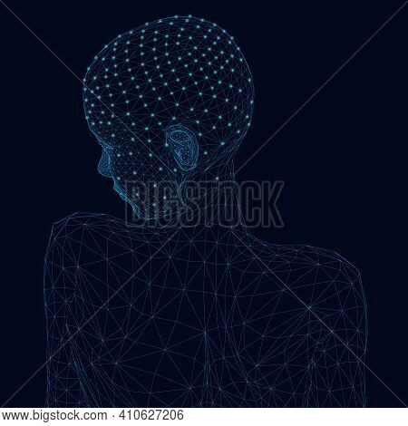 Wireframe Of The Girl From Behind With Her Head Turned. Wireframe Of The Girl From Blue Lines With G