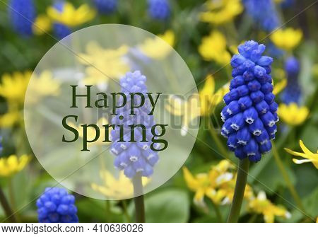 Happy Spring.bright Blue And Yellow First Spring Flowers Background With Text.springtime Concept.