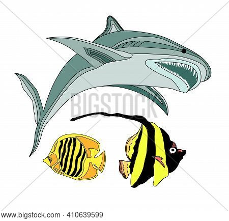 Fish Of The Atlantic Ocean. Vector Illustration Underwater World. Shark, Striped Little Fish. Aquari