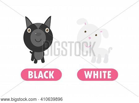 Opposite Black And White, Words Antonym For Children With Cartoon Characters Cute Little Dog, Funny