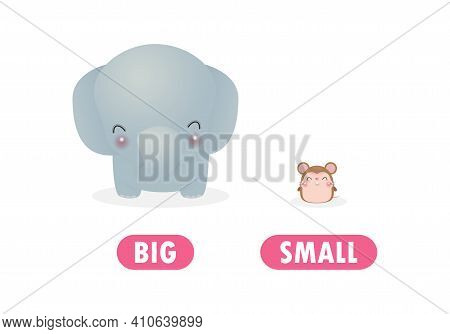 Opposite Big And Small Words Antonym For Children With Cartoon Characters Cute Little Rat With Eleph