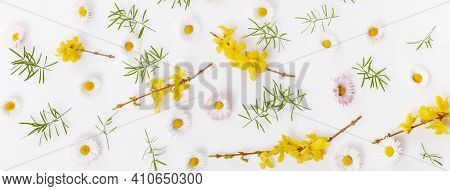Spring Frame Of Small Flowers And Daisy, Floral Arrangement