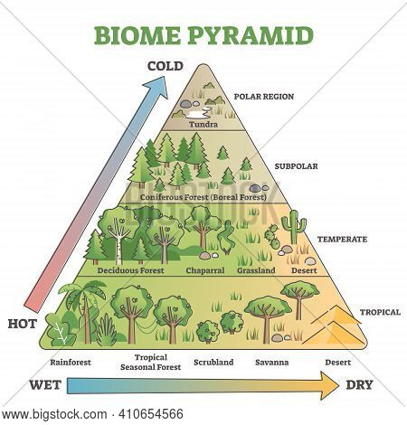 Biome Pyramid As Ecological Weather Or Climate Classification Outline Diagram