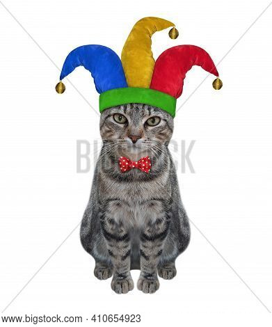 A Gray Cat Clown In A Jester Hat Is Sitting. April Fool's Day. White Background. Isolated.